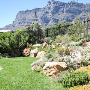 Garden; THE GARDEN PATH - Camps Bay