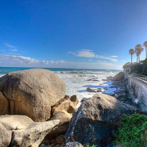 C313 - MOSES BEACH